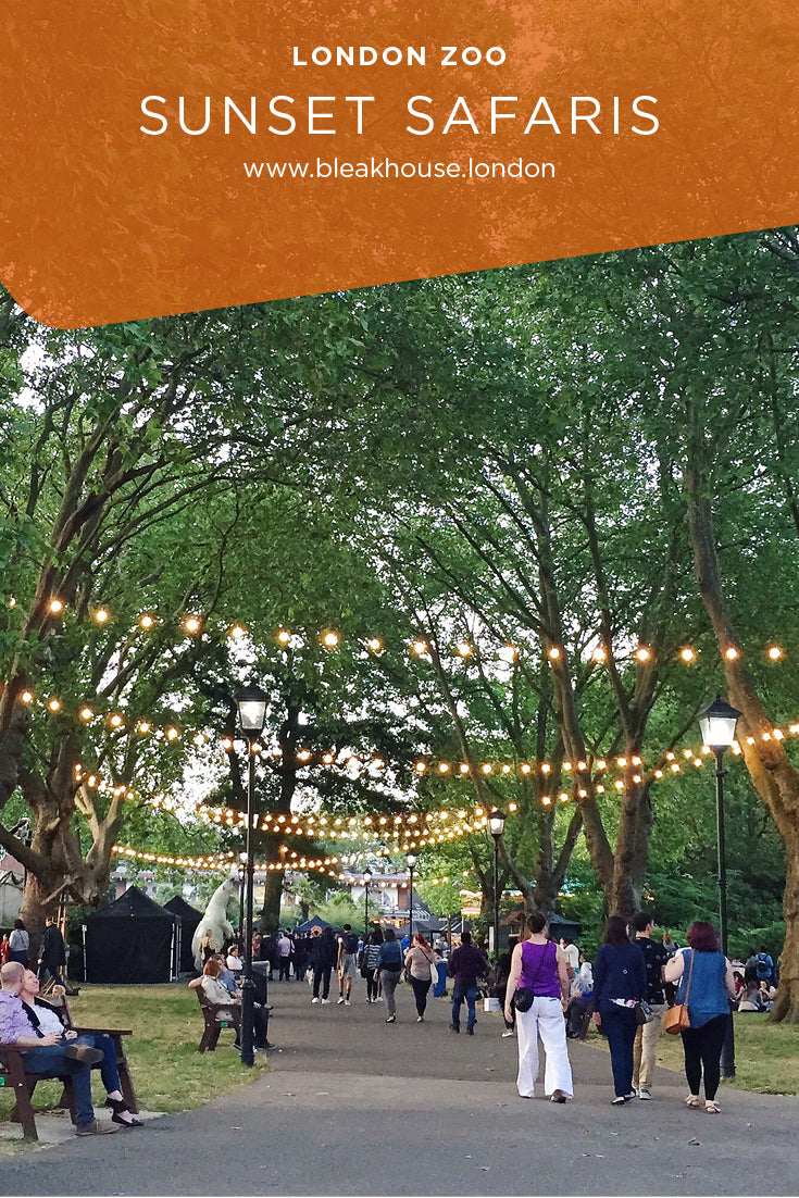 Sunset Safaris at London Zoo are the perfect way to spend a summer date night. There is amazing street food, drinks and the chance to see the animals getting ready for bedtime.