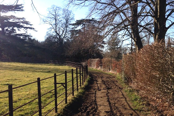 Lodge Park & Sherborne Estate in the Cotswolds is a great place for a walk and is conveniently located just off the A40 from Oxford