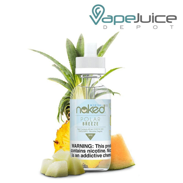 Naked 100 Menthol Polar Breeze eliquid - VapeJuiceDepot