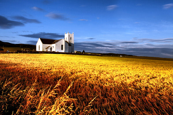 Ballintoy Church and barley field