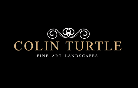 Colin Turtle Fine Art