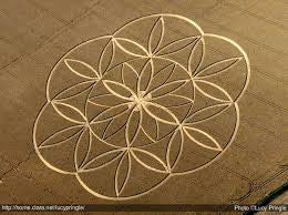 Insight on the Flower of Life