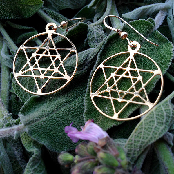Cosmic Star of David - Gold Plated Earrings