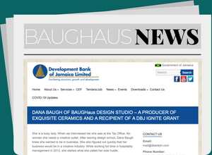 BAUGHaus – Exquisite Ceramics & a Recipient of a DBJ IGNITE Grant
