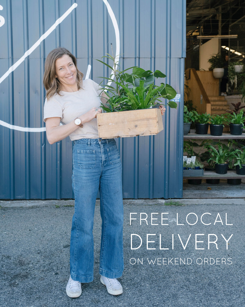 FREE LOCAL DELIVERY ON WEEKEND ORDERS