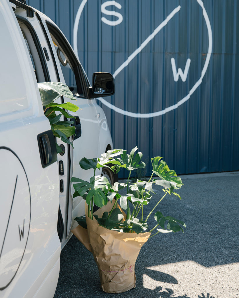 We've launched - Plant Delivery is LIVE!