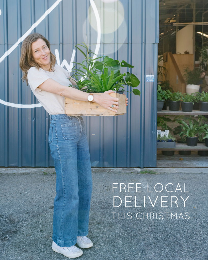 Free local delivery this Christmas