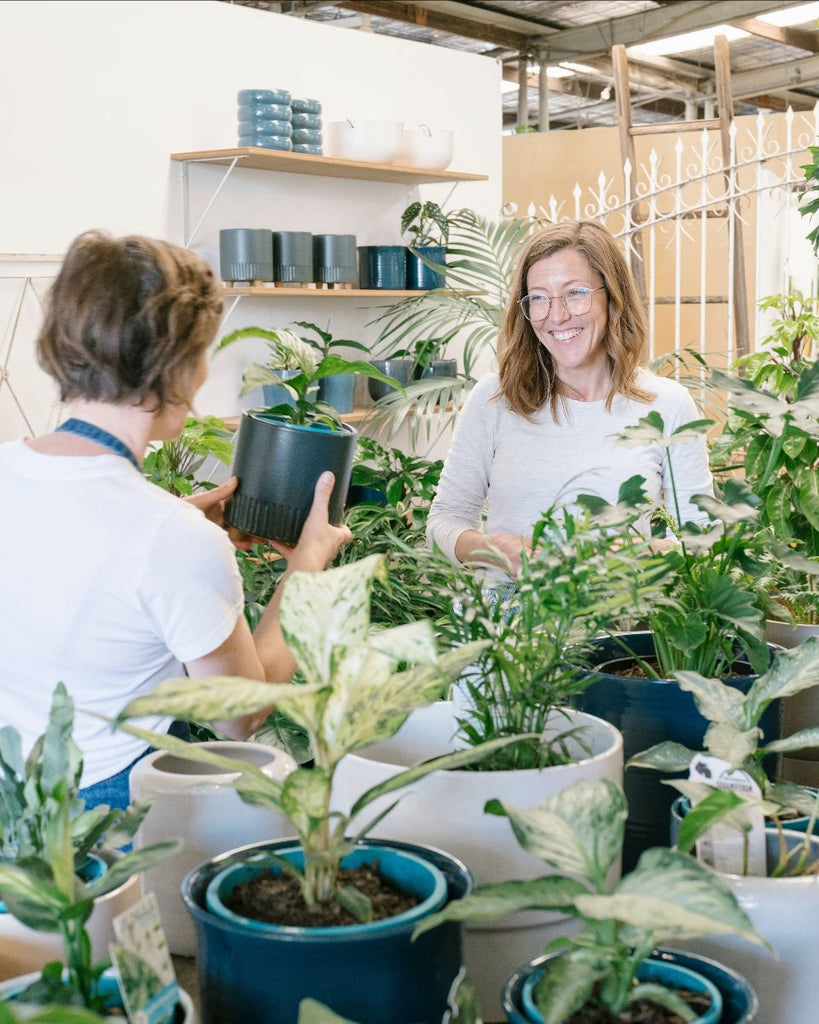 House Plant Masterclass with Claire Greenhill