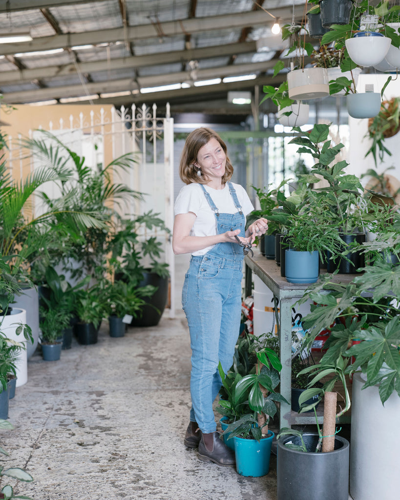 Plant Doctor with Claire Greenhill