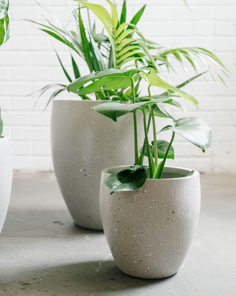 Lightweight Egg Pot - Sea Grey