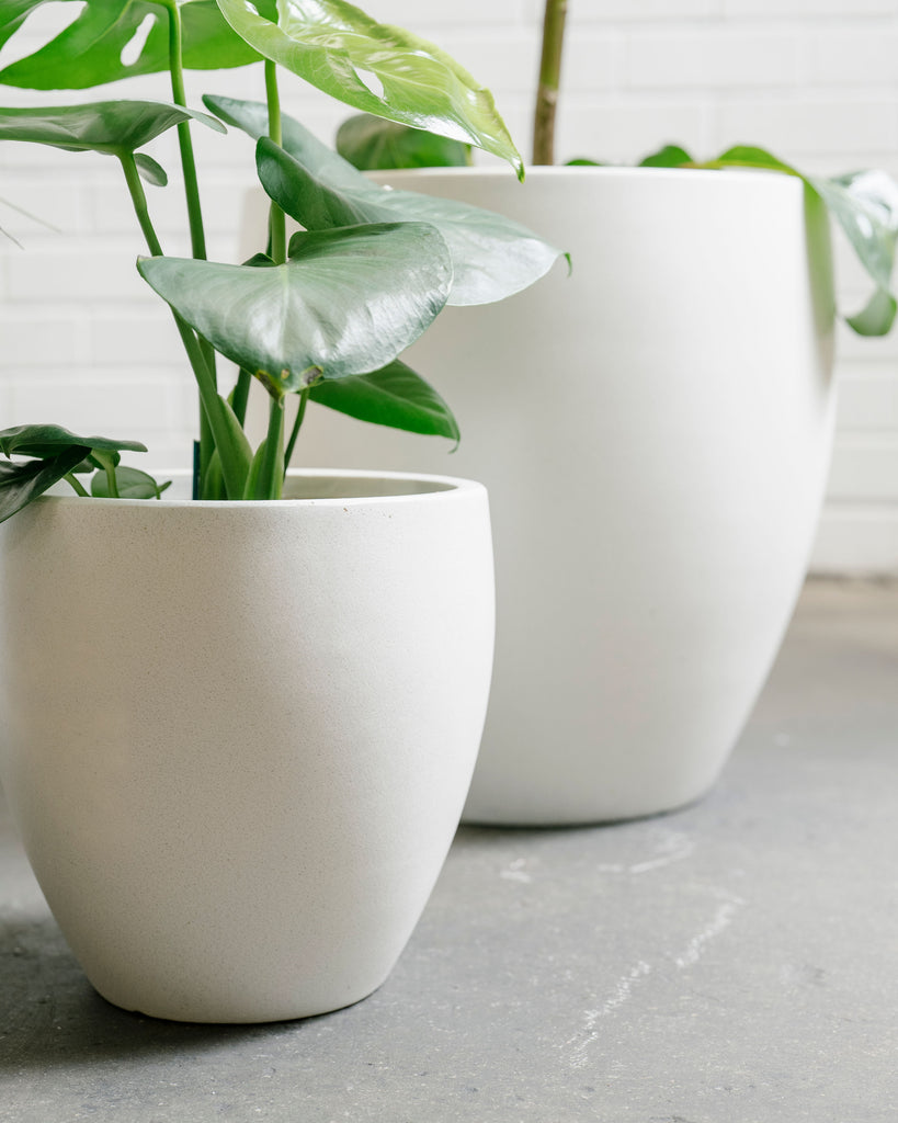 Lightweight Egg Pot - White