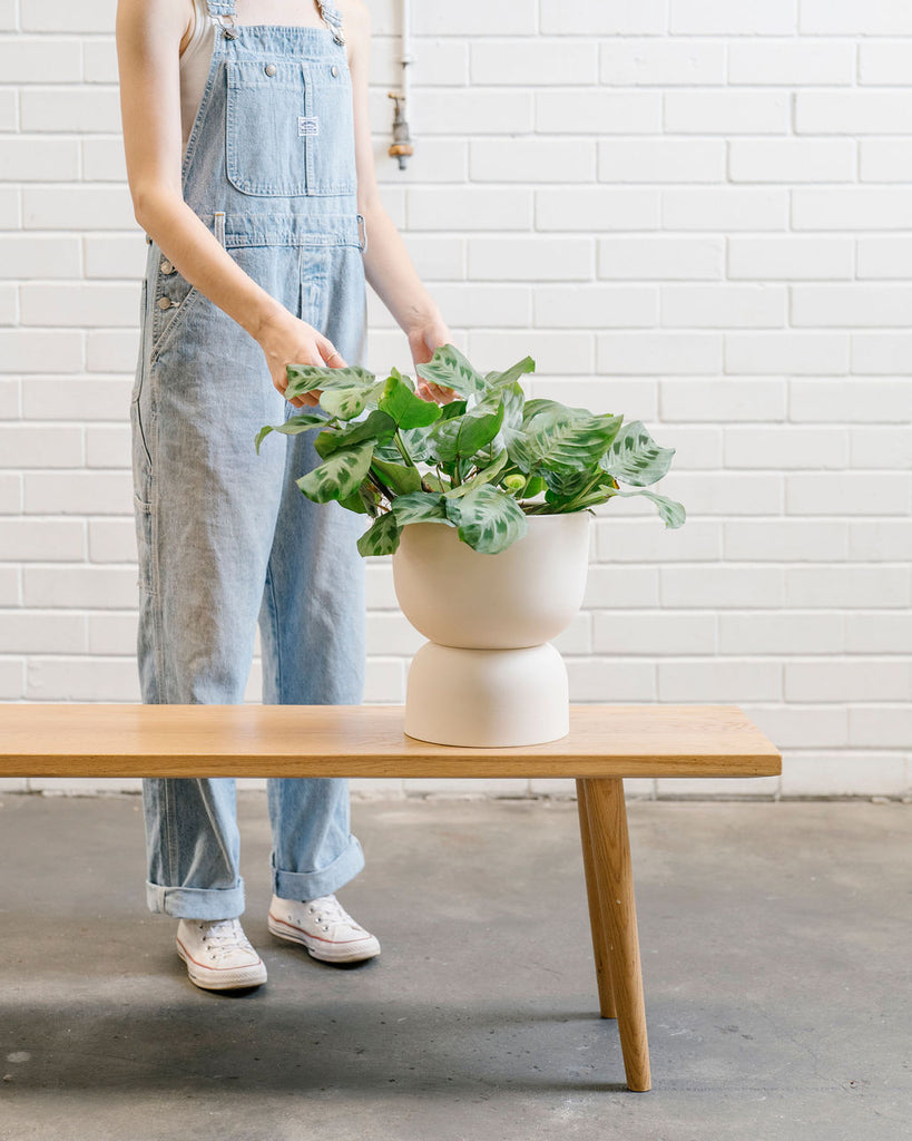 Raw Earth Plant Stand Pot