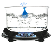 new-useful-kitchen-gadget-for-boiling-water