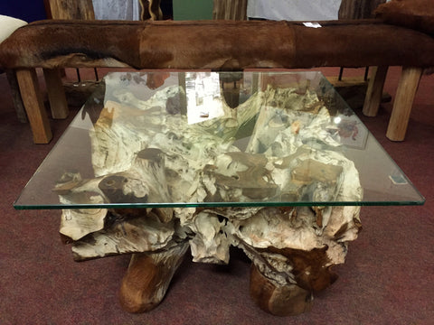 Root Coffee Table Square Glass Top Small 600x600mm