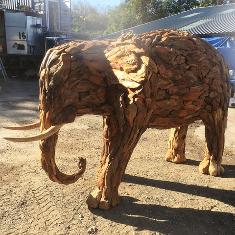 Large Drift Wood Elephant 1.9 meters Tall