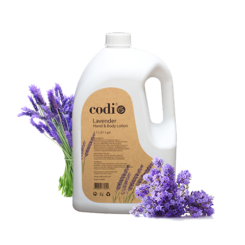 Codi Lavender Hand & Body Lotion 1 Gallon / 128oz