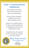 153-100 Reparation Prayer Card (Pack of 100)