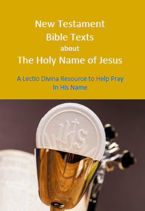 164-1 Book - New Testament Bible Texts About the Holy Name of Jesus