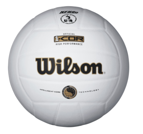 Wilson I-Cor High Performance Volleyball (Indoor)