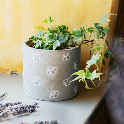 Bee Cement Planter