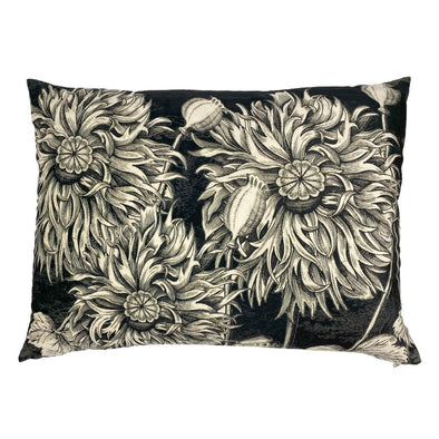 Black Poppy Rectangle Velvet Cushion