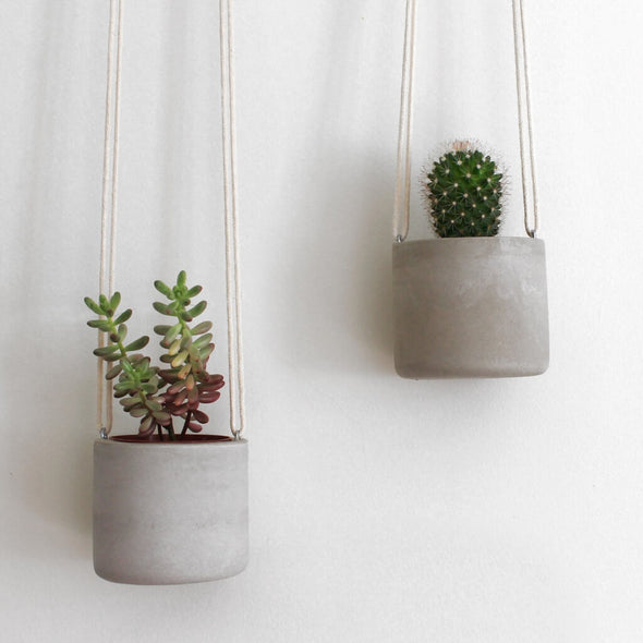 Cacti And Succulent Hanging Concrete Planter
