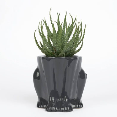 Black Panther Planter
