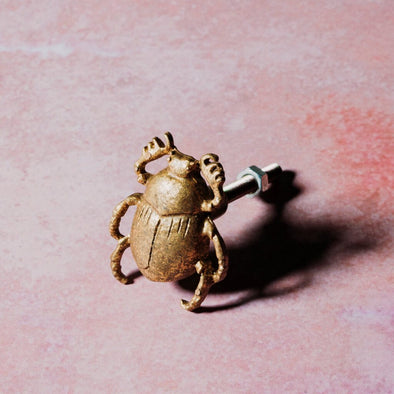 Gold Beetle Drawer Knob