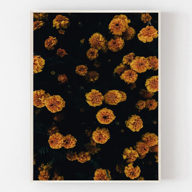 Golden Blooms Print