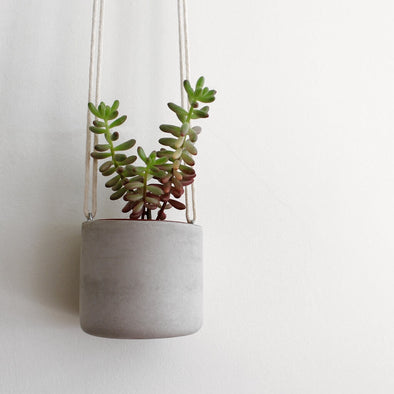 Mini Hanging Concrete Planter