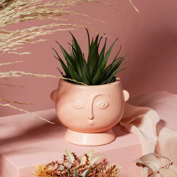 Mini Pink Face Planter