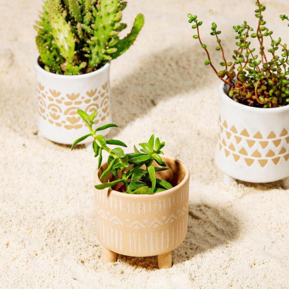 Sandy Plant Pot with Legs