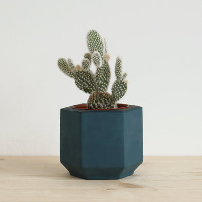 Small Handmade Blue Succulent Planter