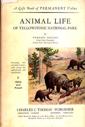 Animal Life of Yellowstone National Park