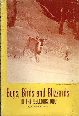Bugs, Birds and Blizzards in the Yellowstone