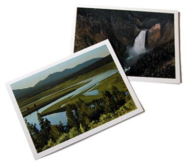 YELLOWSTONE NOTECARDS