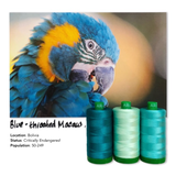 Aurifil 40wt Color Builder Blue Throated Macaw