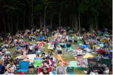 Fuji Rock festival in the woods