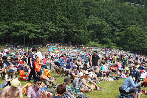 Fuji Rock: music in the woods