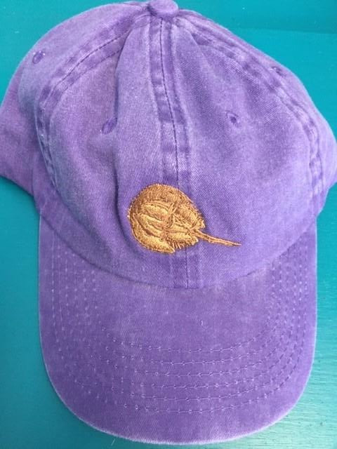 Kids Horseshoe Crab Hat
