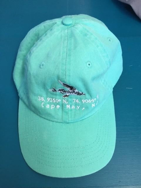 Flying Fish Hat with Coordinates