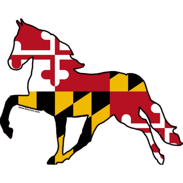 Horse -MD Flag All Weather Decal