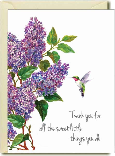 Thank you- Humming Bird Boxed Note Cards