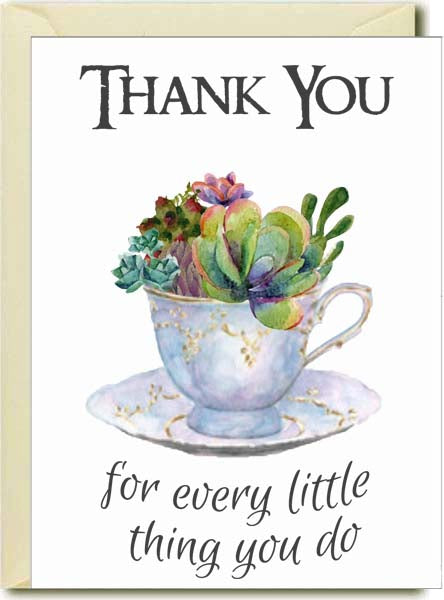 Thank you - Succulents in Tea Cup Boxed Note Cards