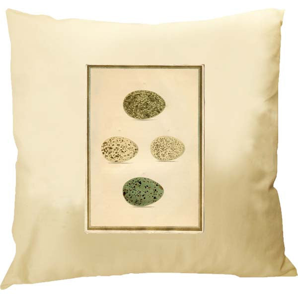 Eggs Framed Pillow