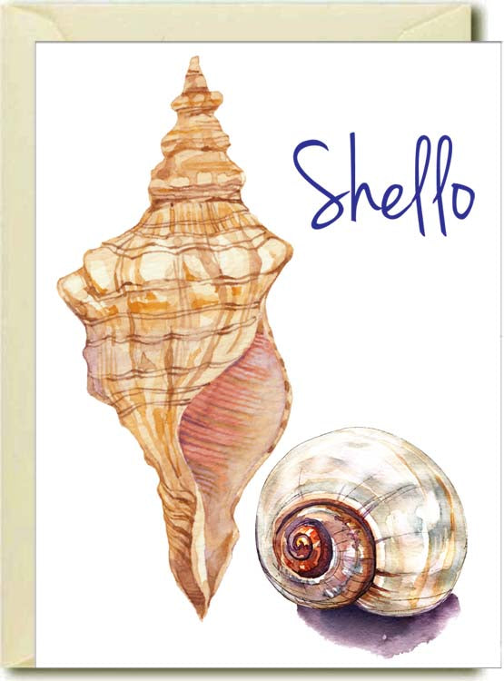 Shello Boxed Note Cards