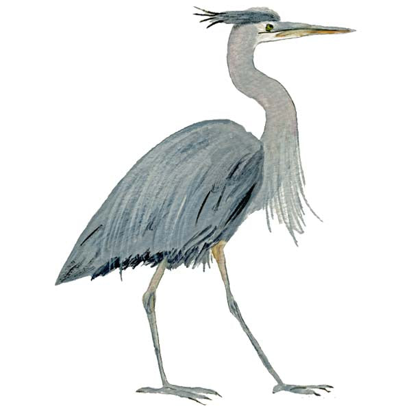 Heron All Weather Decal