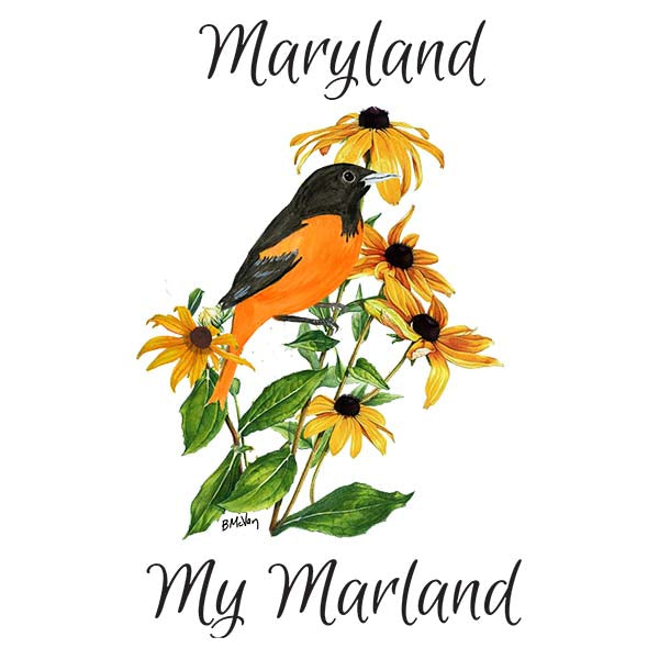 Oriole in Black-Eyed Susan-Maryland My Maryland Wall Art