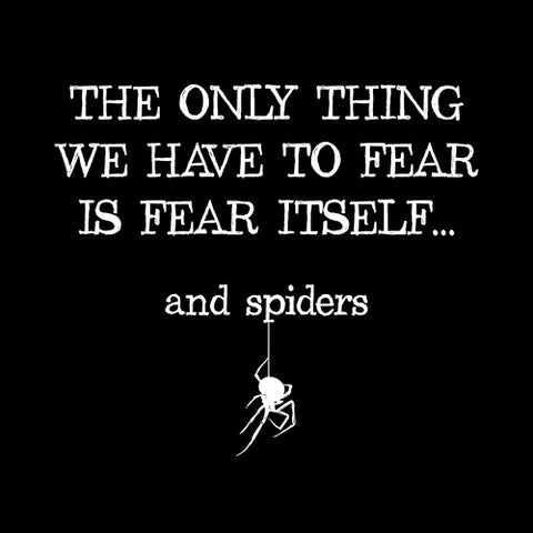 The Only Thing We Have To Fear Is Fear Itself, And Spiders T-Shirt