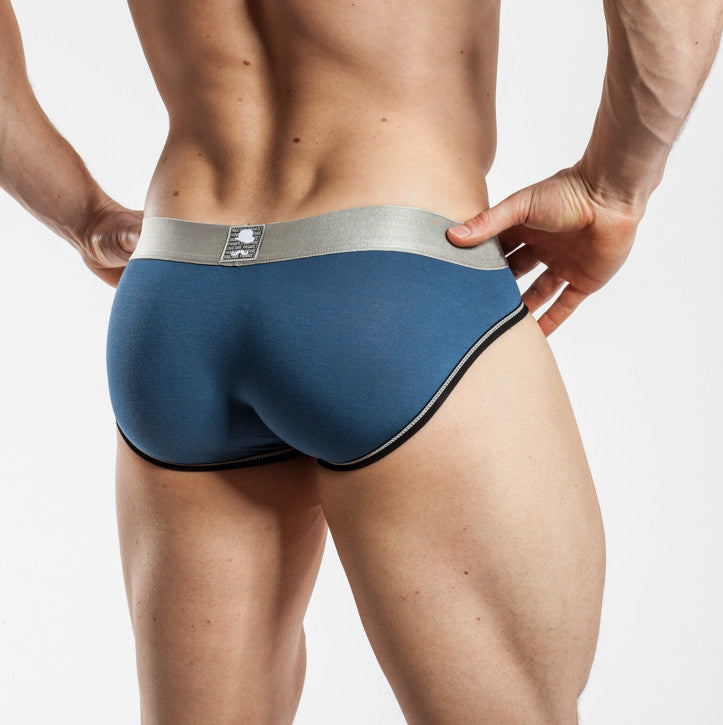 Private Structure Low Rise Brief Dark Blue
